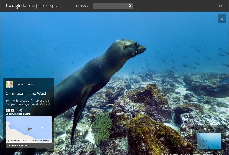 Google Океаны