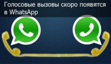 WhatsApp-golosovie-vizovi-logo