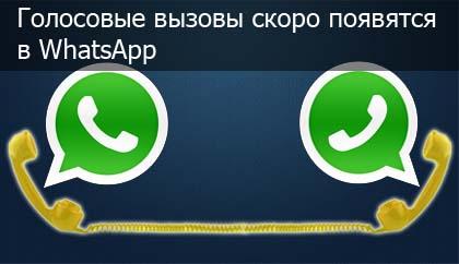 WhatsApp-golosovie-vizovi-logo