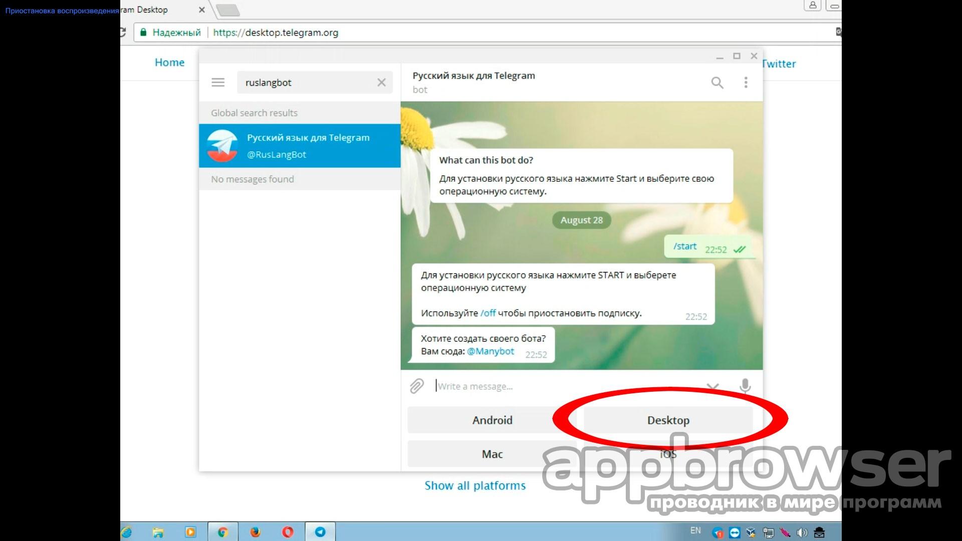 Телеграмм онлайн на русском языке